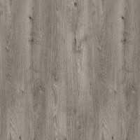 Siberian Oak P