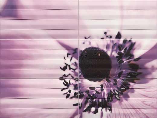 Maxima Violet 2 - 6-element wall decorations