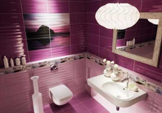 Maxima Violet & Purple