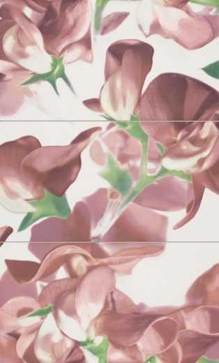 bloom-carmine-3-element-wall-decorations