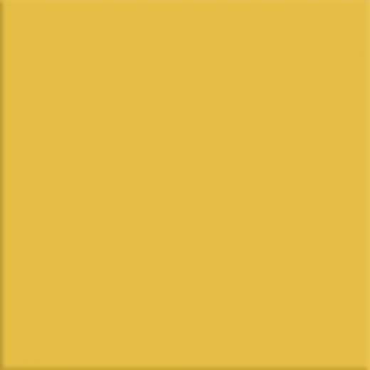 Night & Day - Golden Yellow Gloss