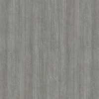 Silvery Oak L